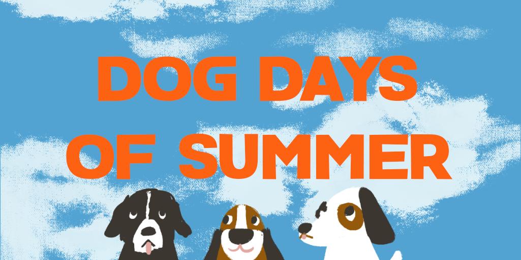 dog days of summer - twitter banner